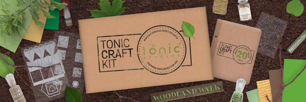 tonic-craft-kit-20-all-about-boxes